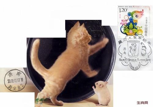 生肖鼠猫和谐片删改.jpg
